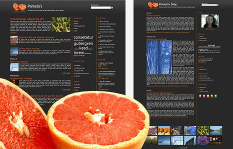 New model: Pomelo