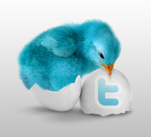 Post your articles directly to Twitter
